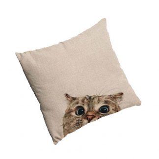 Katten Sierkussens